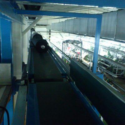 mimsangidasektoru (4)